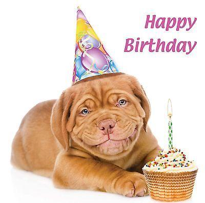 Funny Birthday Card Smiling Dogue De Bordeaux Dog Puppy Cupcake Freepost Ebay Bordeaux Dog Happy Birthday Dog Dog Birthday Card