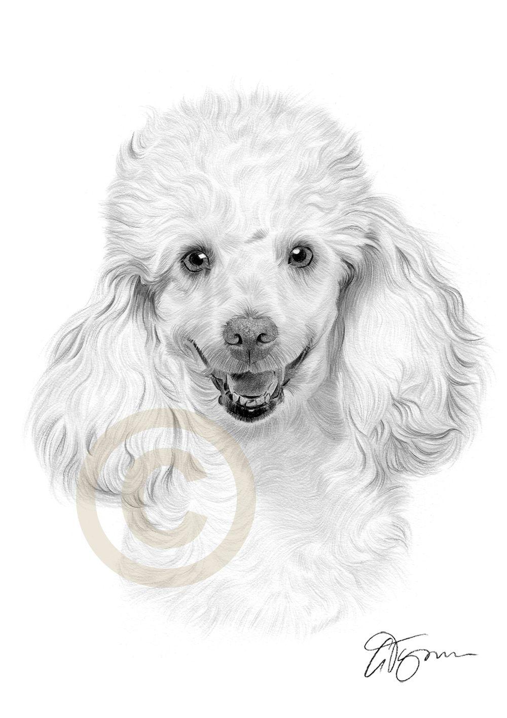 Imagen Relacionada Perros Dibujos A Lapiz Pintura Perro Dibujos De Perros
