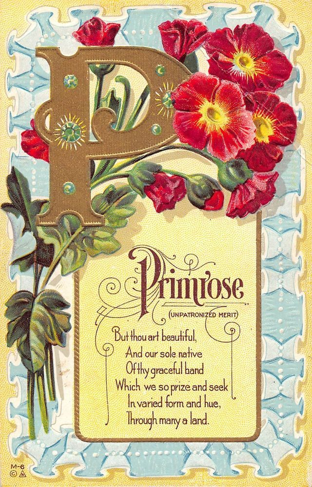 P is for Primrose colorful flowers poetic verse antique pc (Z6811)