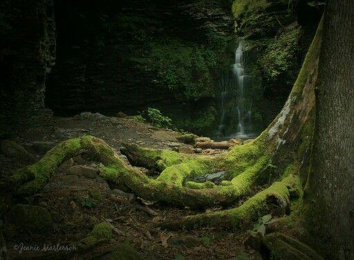 Fuzzybutt Falls Richland Creek Wilderness Area Ozark National Forest