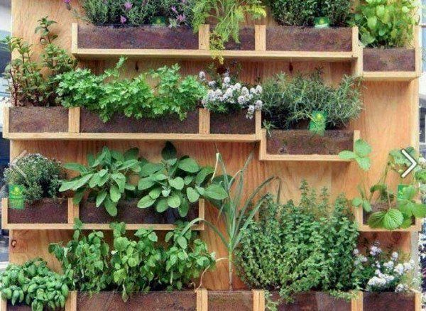 wall mounted herb garden ideas pallet wood creative vertical garden ideas