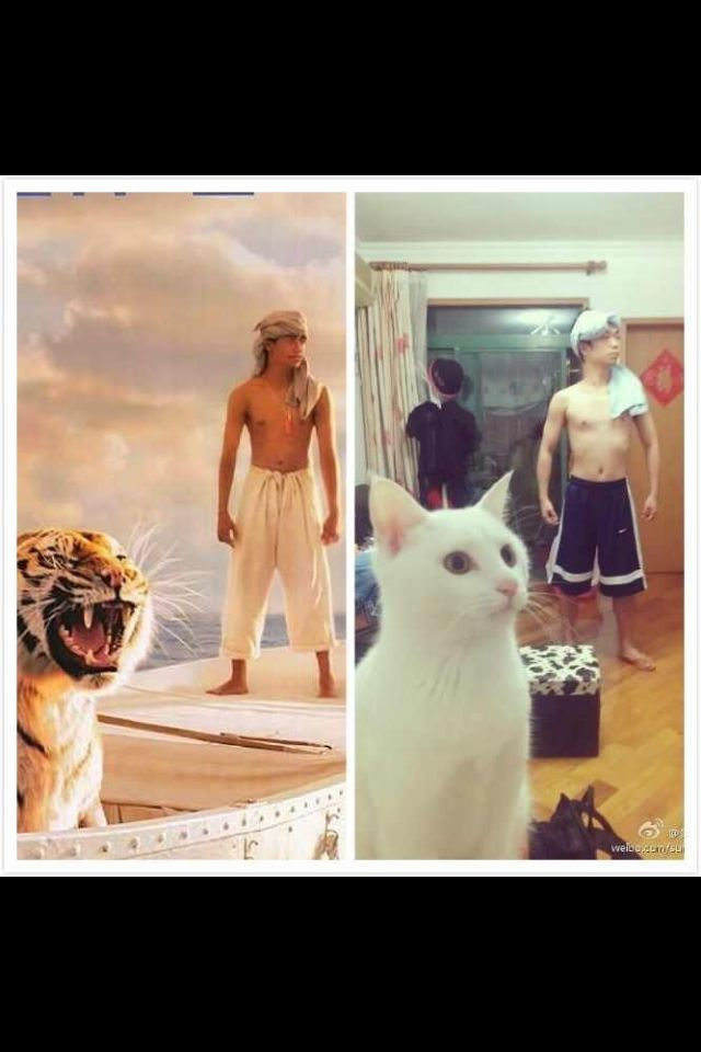 Nailed it life of pi