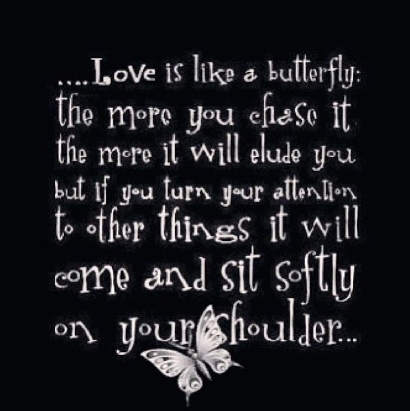 Love Is Like A Butterfly The More You Chase It The More It Will