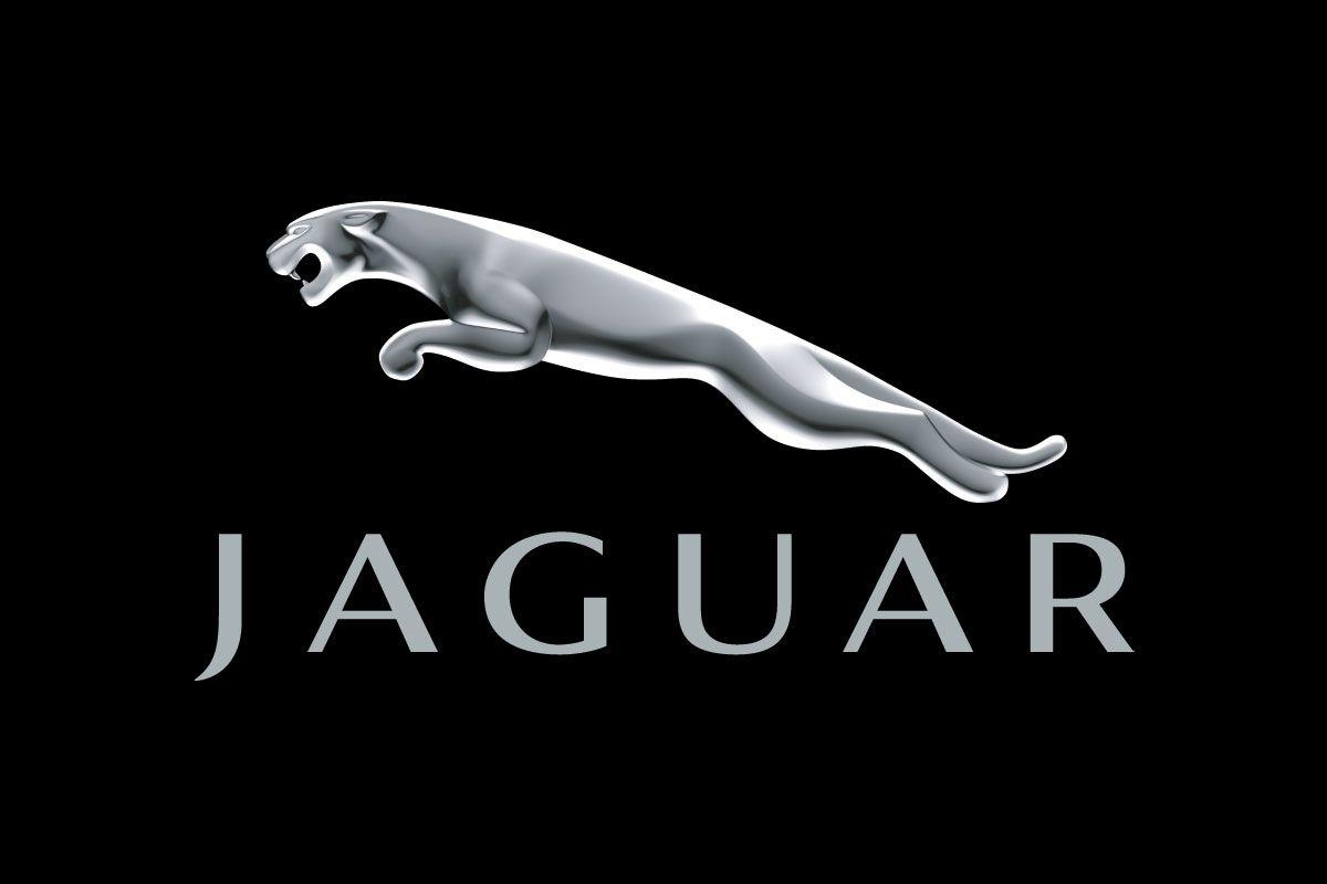 Pin By Darren Good On Jaguar Jaguar Car Logo Jaguar Car Jaguar S Type