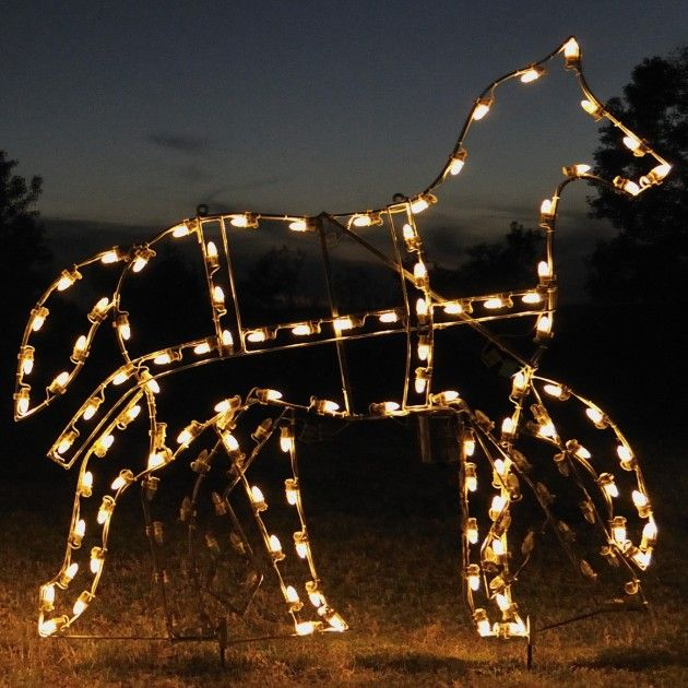 A large collection of outdoor christmas light displays horse a large collection of outdoor christmas light displays mozeypictures Choice Image