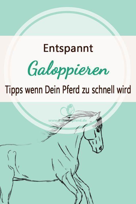 Entspannt Galoppieren - das kannst Du tun wenn Dein Pferd zu schnell wird! in 2020 | Pferde, Pferde