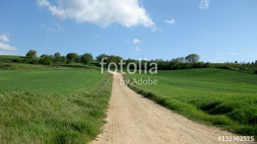 Paisajes veraniegos. #fotolia #sold #photo #Photo #photography #design #photographer #Landscapes #summer #green #fields #roads #colorful