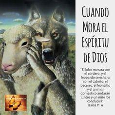 Cuando Mora El Espíritu De Dios Espiritu De Dios Libro De Isaias Libros Cristianos Pdf