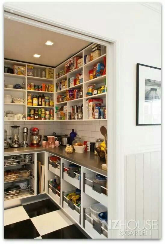 Pantry with counter top house plans pinterest for Pantry storage ideas nz