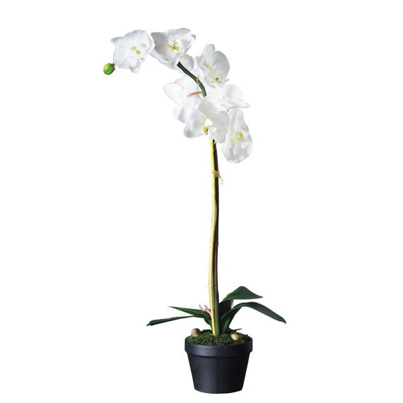 Artificial White Orchid In Pot Single Stemmed