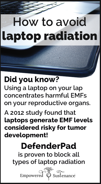 Laptop Radiation: Don\'t fry your swimmers or zap your uterus ...