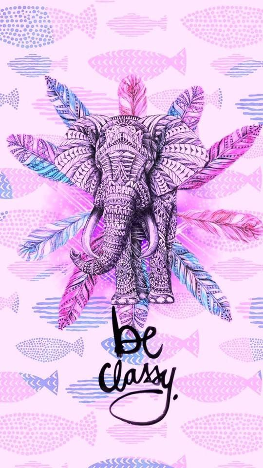 pin by arely garcia on elephan