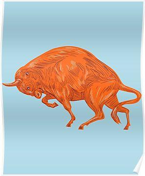 European Bison Charging Drawing