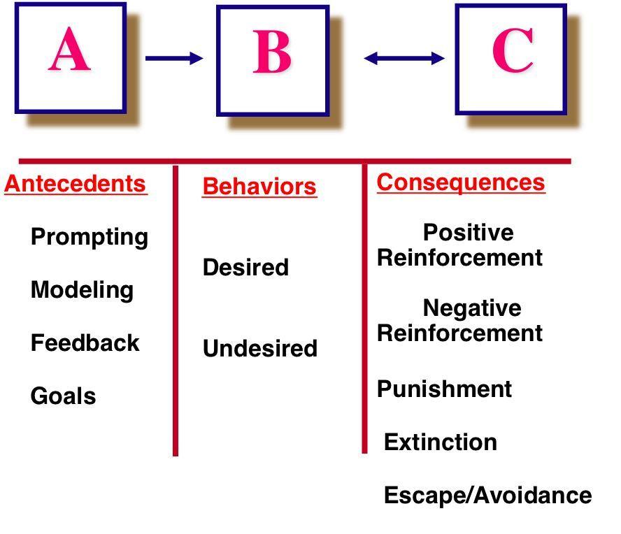 aba therapist resume summary