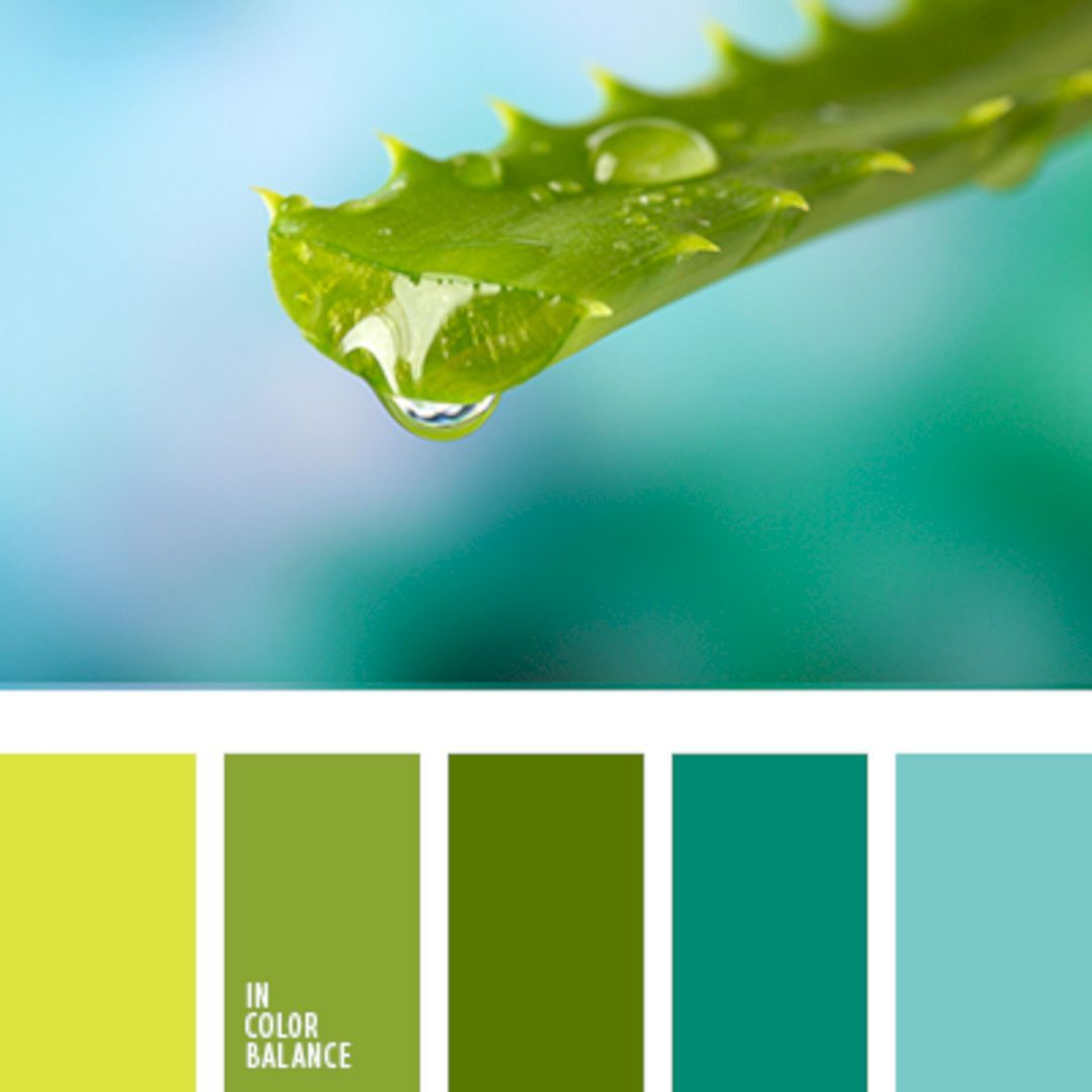 best nature color palette for beautiful house house