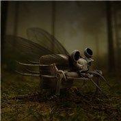 Bug Swap 8