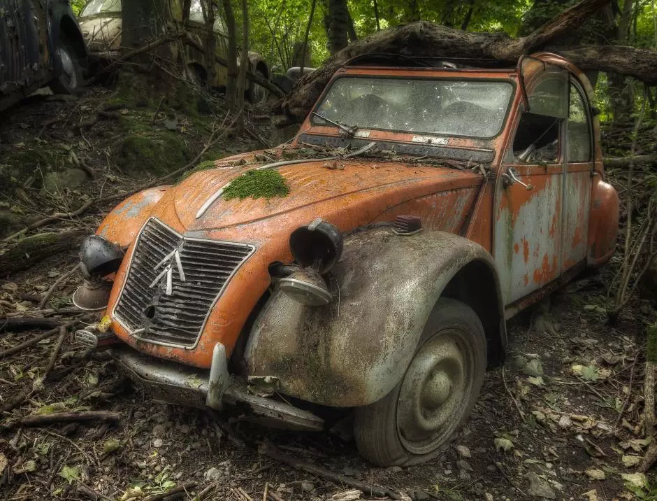 Abandoned Ferraris, BMWs and Mercedes feature in incredible images of forgotten cars