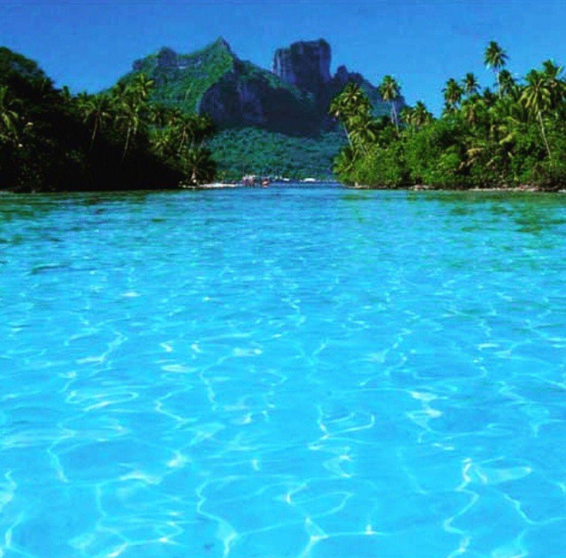 Blue view BlueOasisTropicalFrench PolynesiaTourismTravelLandscapesBeautiful Blue view