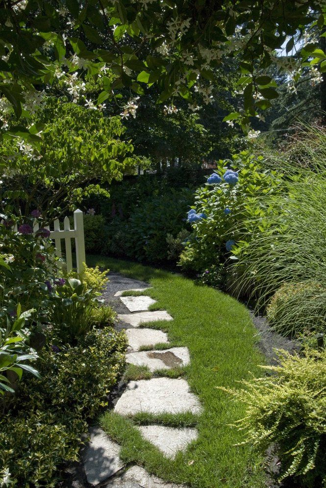Side yard pathway (With images) | Narrow garden, Side ... on Narrow Side Yard Landscaping id=46297
