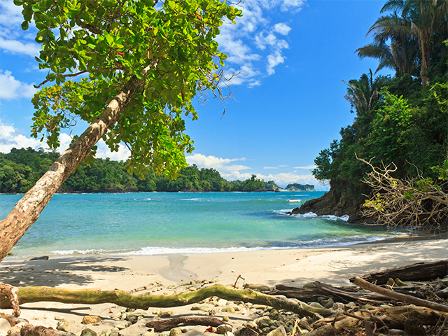 Visit Manuel Antonio Beach... #InterbusCR #TransportationCR