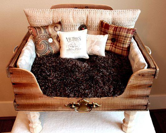 Habitaciones Diseñadas para Mascotas Costa Rica cama de perro - sillones para habitaciones