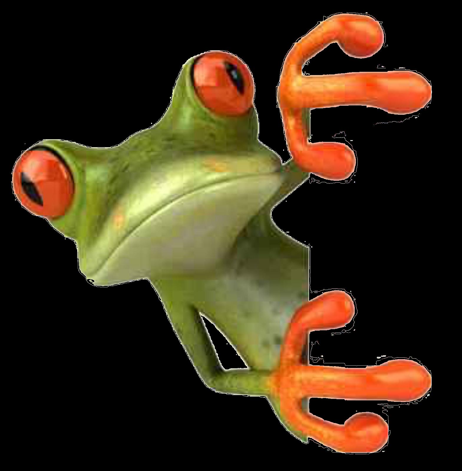frosch  wilde tiere frösche schöne schmetterlinge