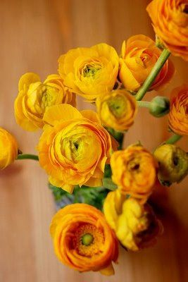 ranunculus... too bad these are not in season in September!