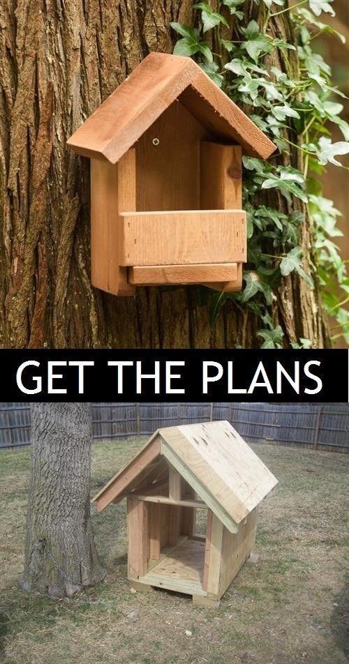 diy cardinal bird house plans