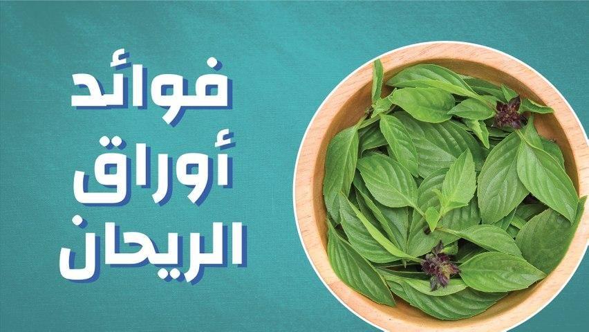 فوائد أوراق الريحان Spinach Vegetables Food