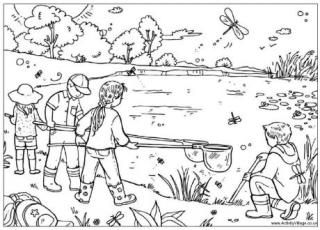 Pond Dipping Colouring Page Summer Coloring Pages Coloring