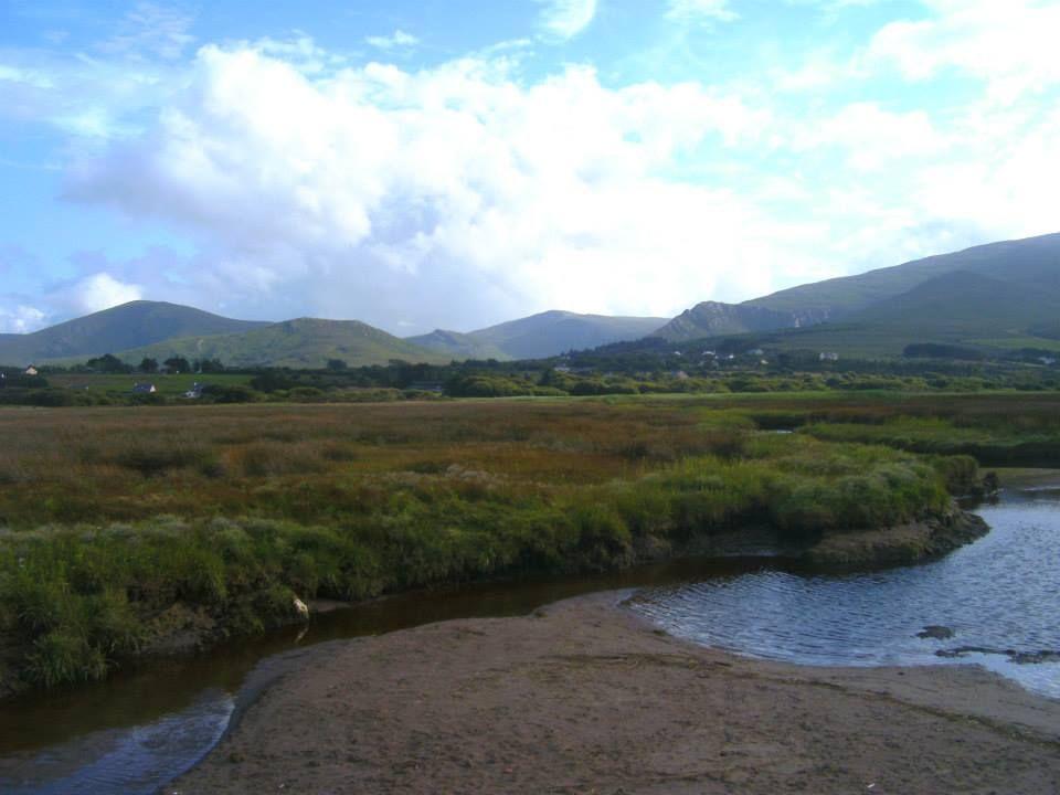 castlegregory co kerry ireland 2013 wetlands