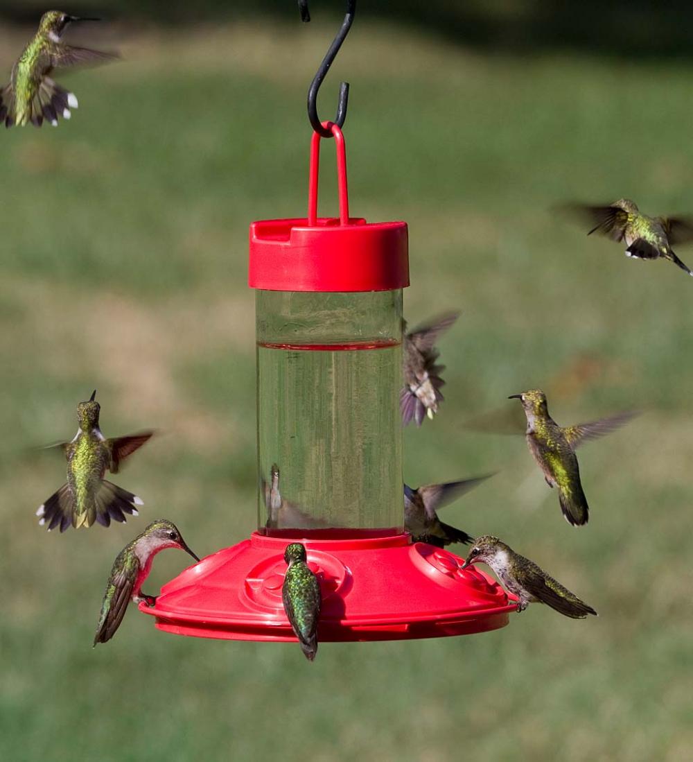 This unique DishwasherSafe Hummingbird Feeder provides