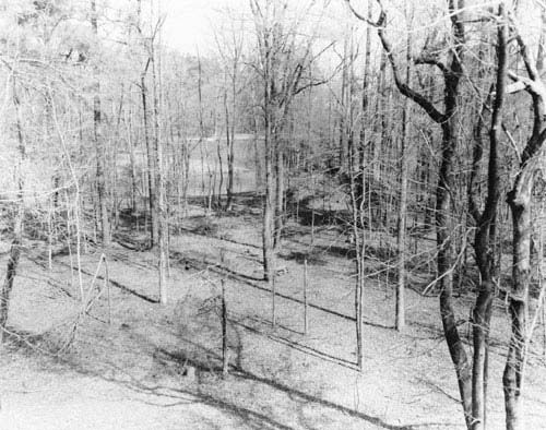 Adamson Mounds Site in Kershaw County, South Carolina.