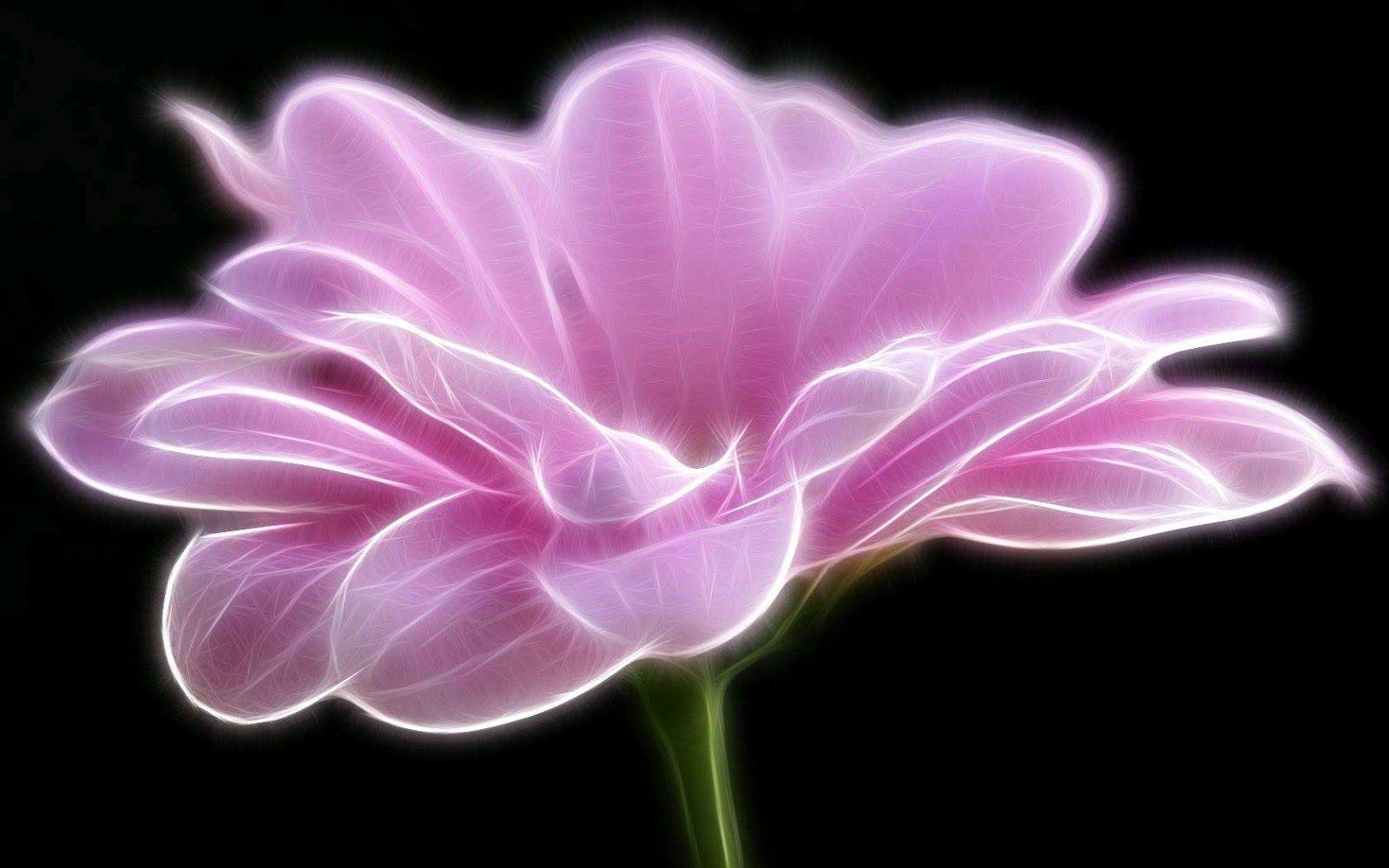 Dark Pink Wallpaper Bing Images Pink Wallpaper Pinterest
