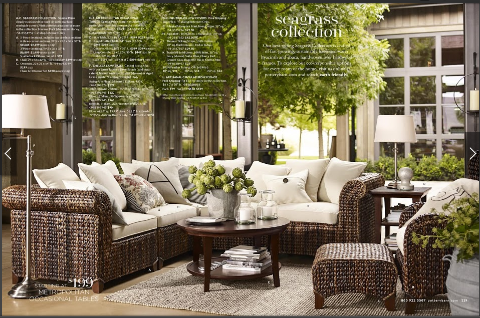 The Seagrass Collection From Pottery Barn I Don T Want