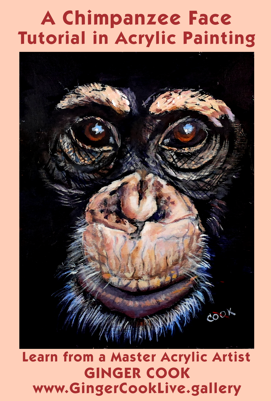 Chimp Face Poster | DOWNLOADABLE ACRYLIC LESSONS to Buy and