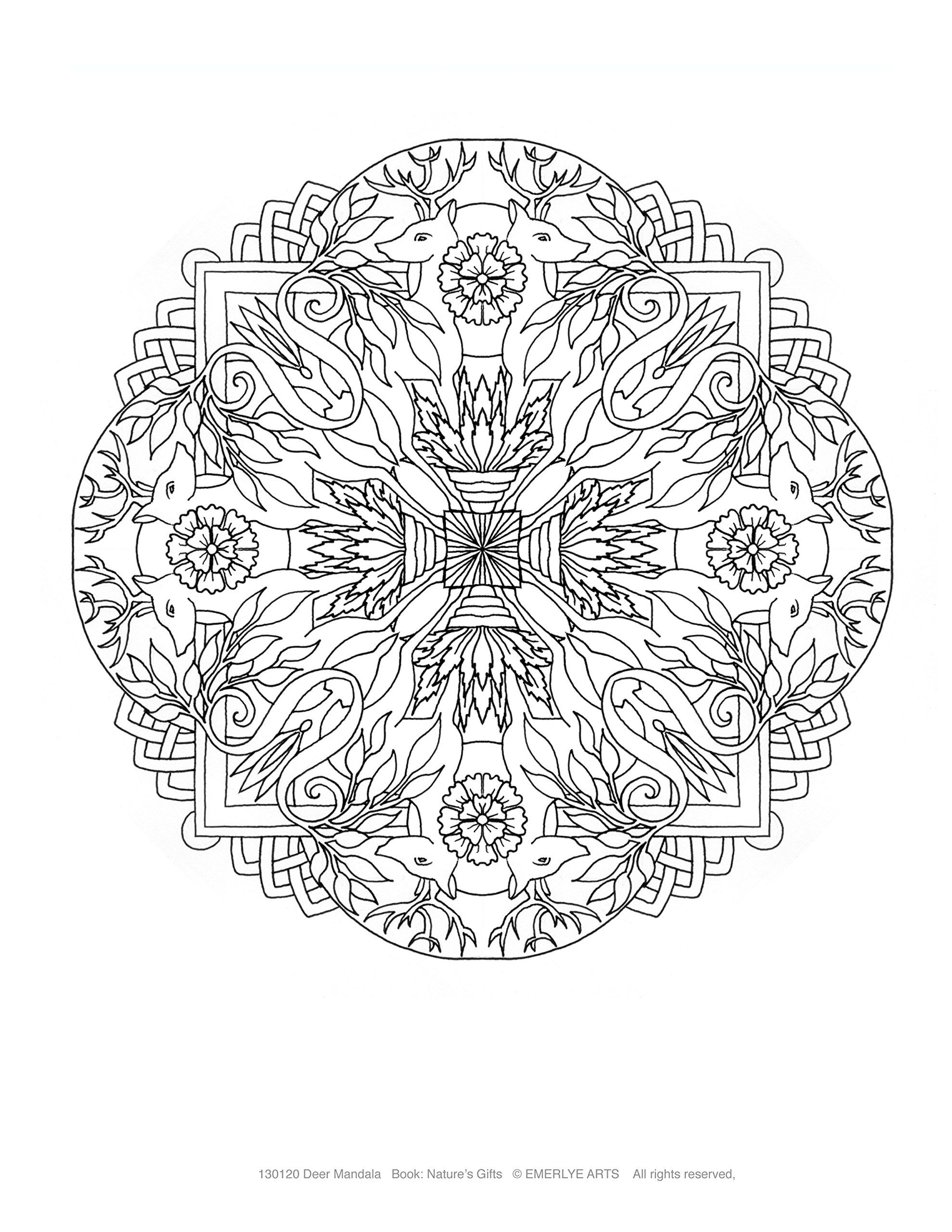 Natureus gifts a collection of complex mandalas for adults to color