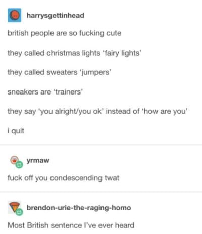 17 Times British Tumblr Roasted The Absolute Shit Out Of Everyone