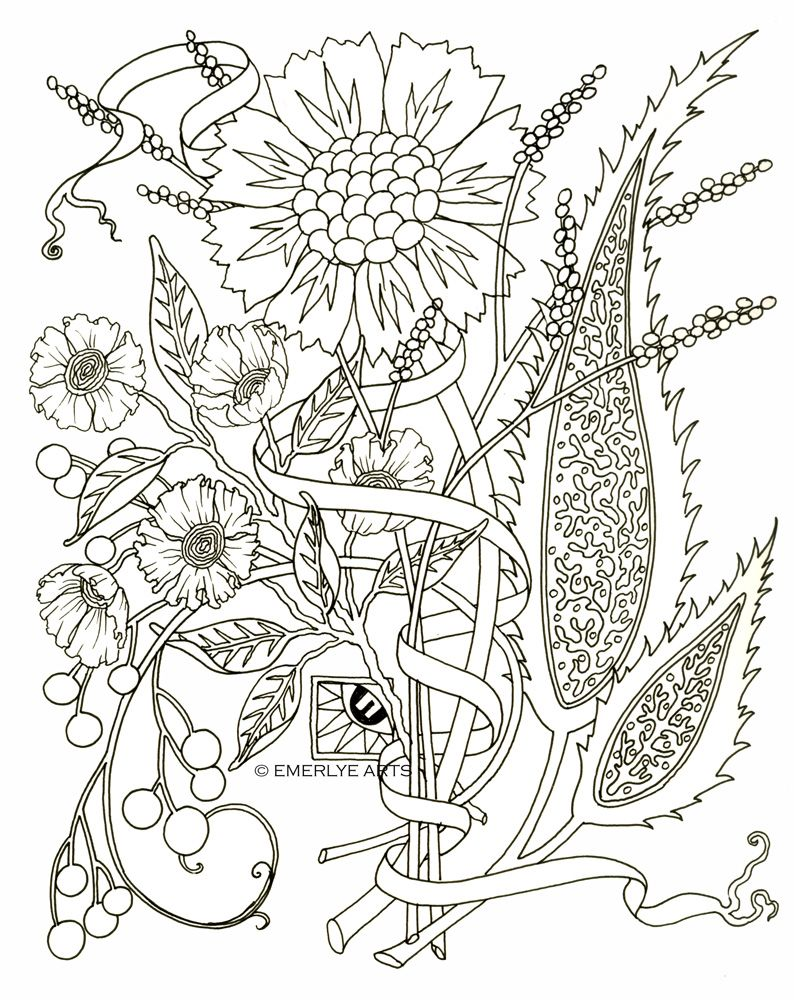 Pin on B/W Drawings, Colouring Pages