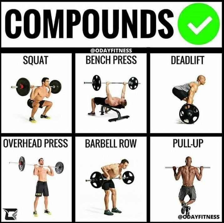 Exactly what I do | Barbell workout, Ectomorph workout ...