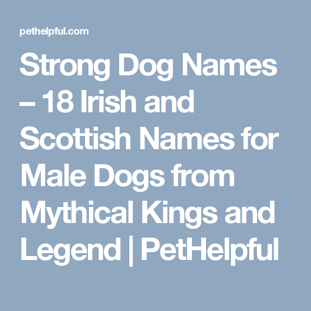 20 Mythical Irish And Scottish Names For Male Dogs Dog Names