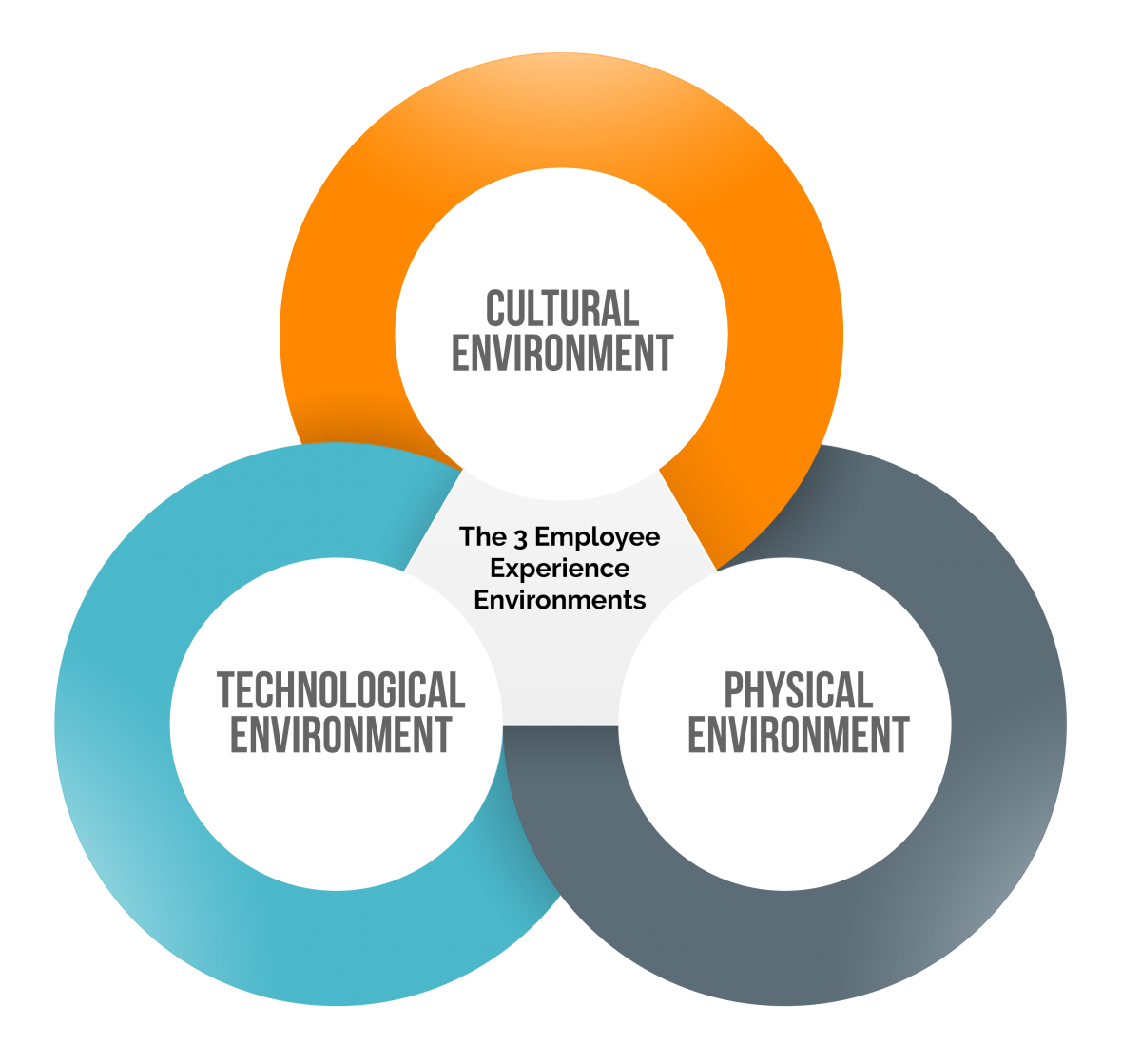The Three Environments That Create Every Employee ...