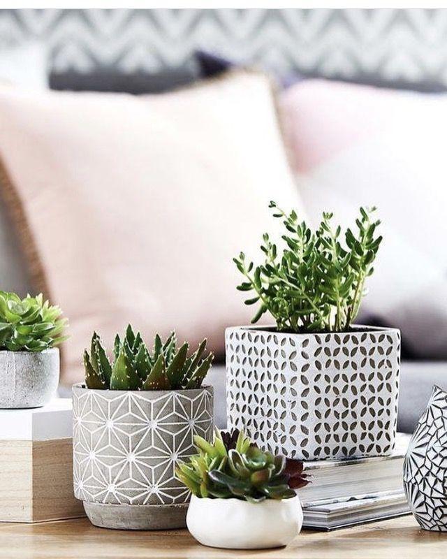 Planters | Studio Decor | Pinterest | Planters, Plants and Cacti