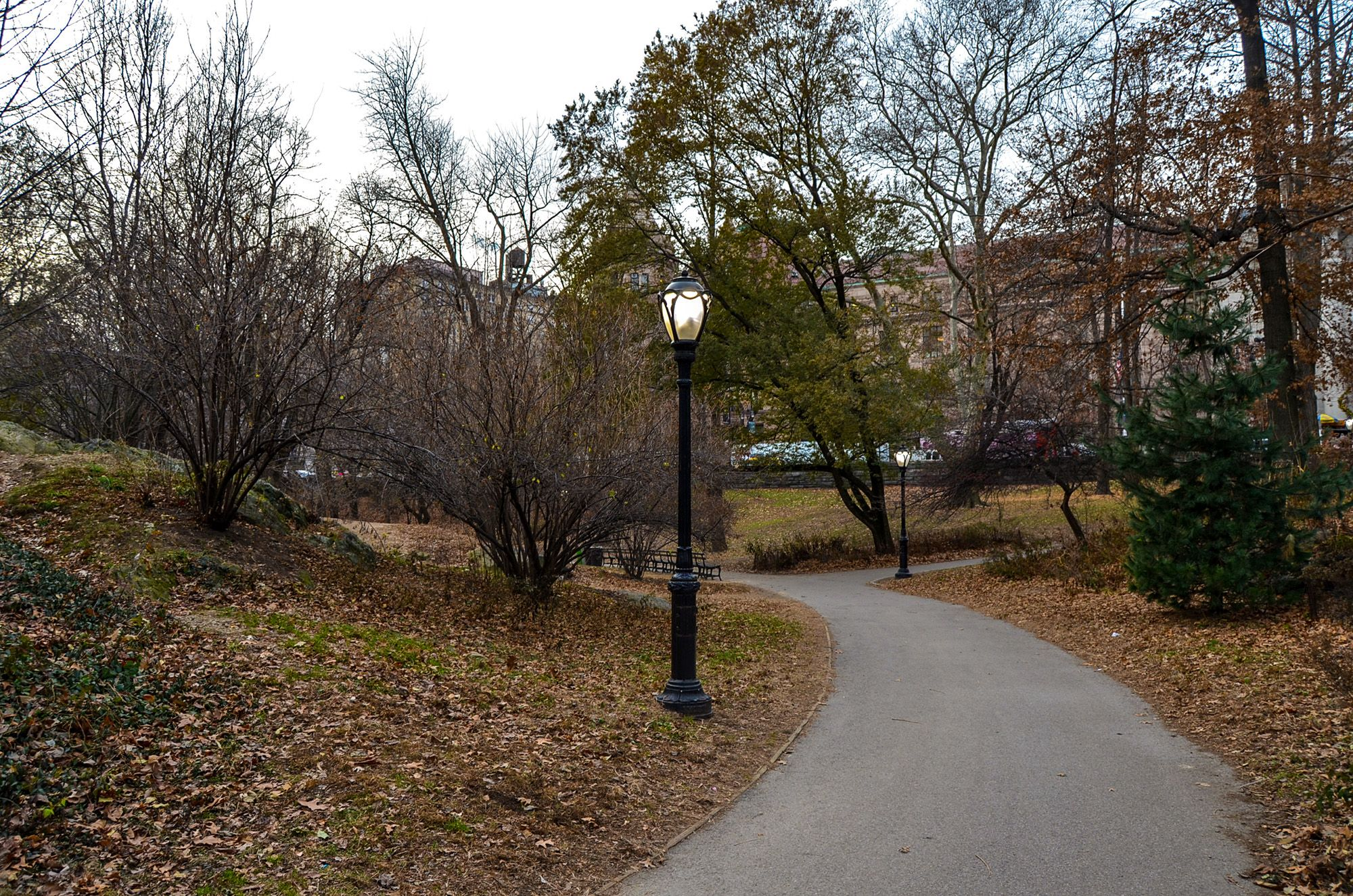 Ruta andando por Central Park