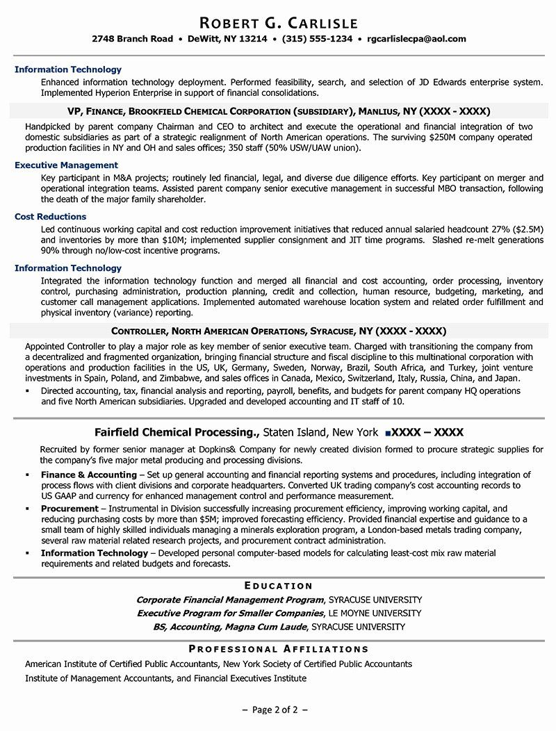Chief Financial Officer Resume Example Awesome Executive