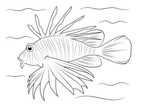Lionfish Coloring Page Free Printable Coloring Pages Lion Fish Sea Animals Drawings Fish Drawings