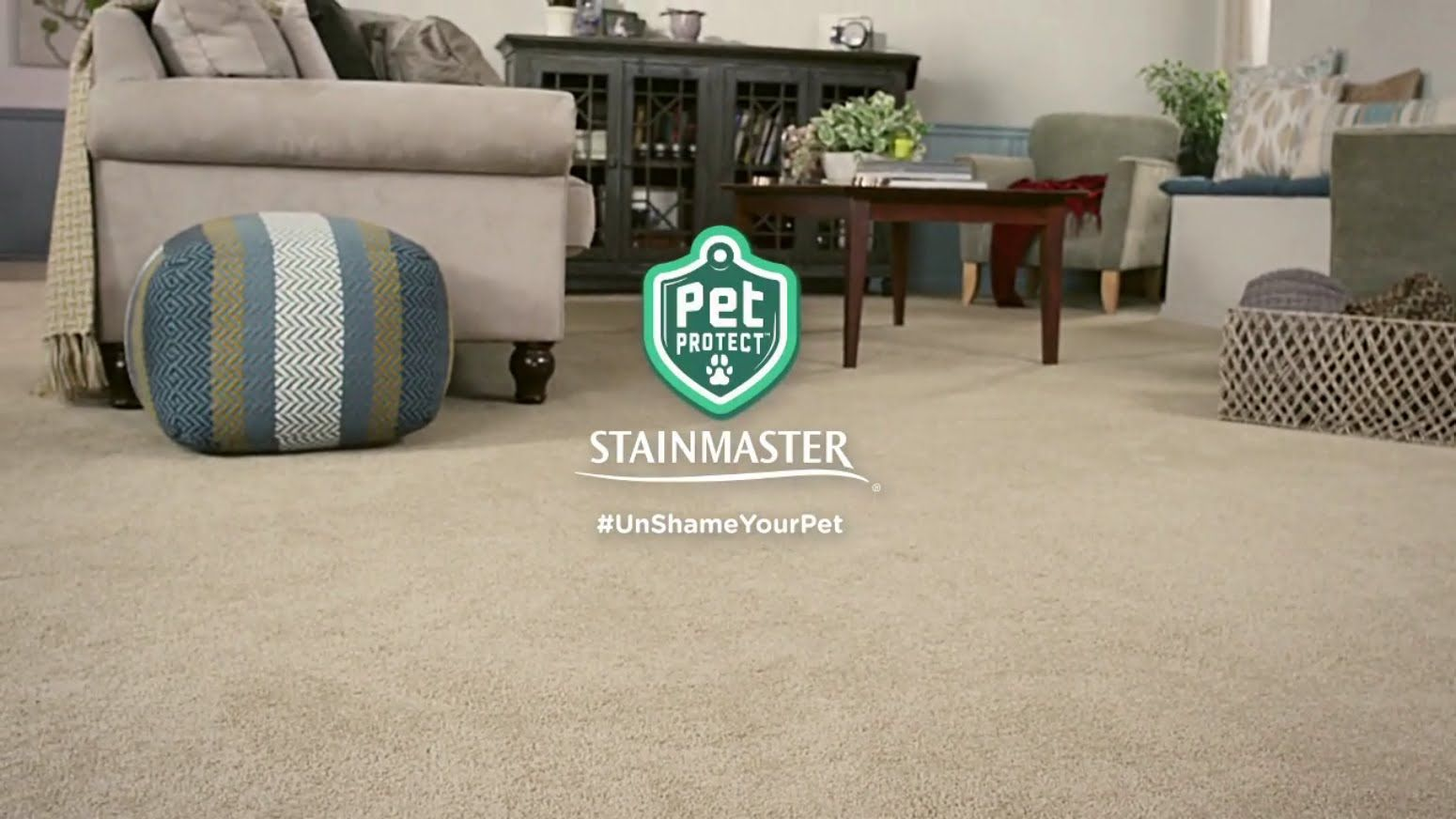 UnShameYourPet with Stainmaster's Pet Protect Carpet
