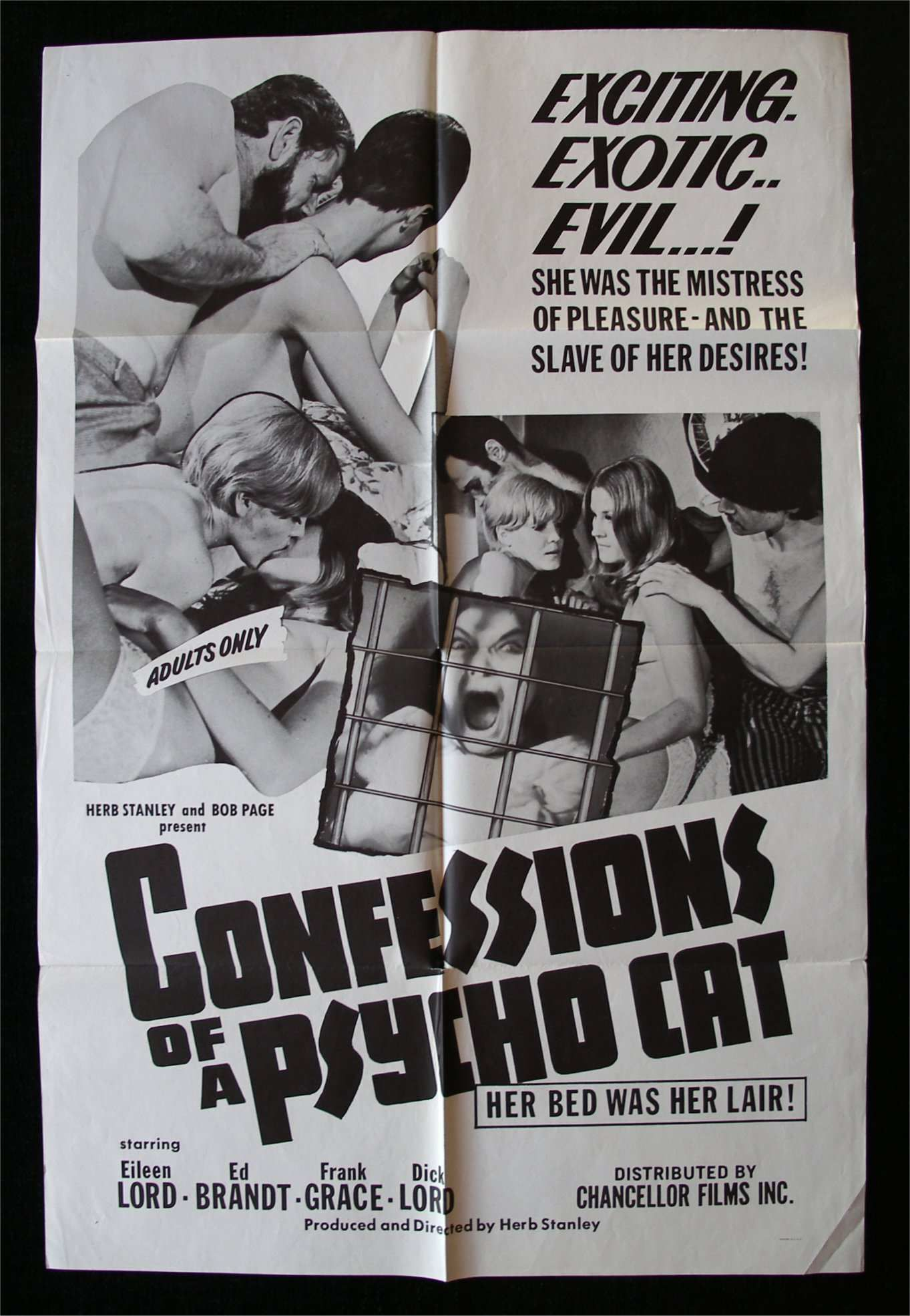 cult-movie-porn