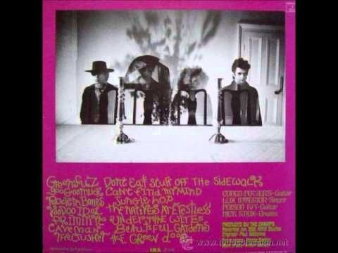 ▶ The Cramps-Psychedelic Jungle(Full Album) -