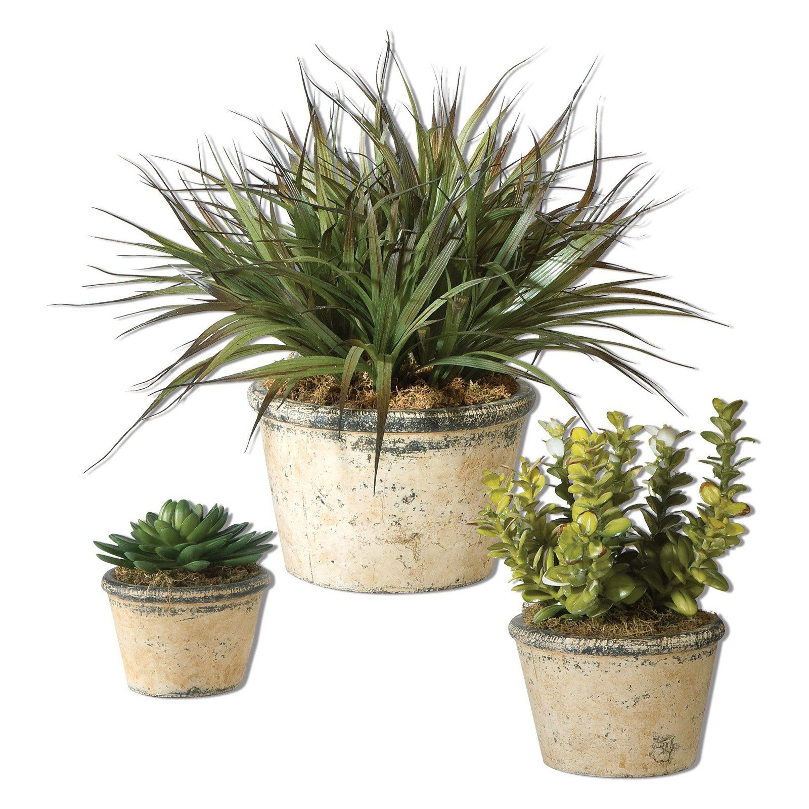 Uttermost la costa greenery set of products